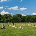 ¿Qué hacer en Nueva York en Julio y Agosto del 2016, durante las vacaciones de verano?