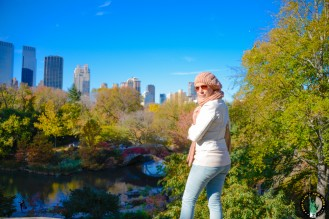 central-park-automne-fall-4