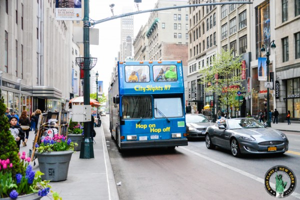 bus-hop-on-hop-off-new-york