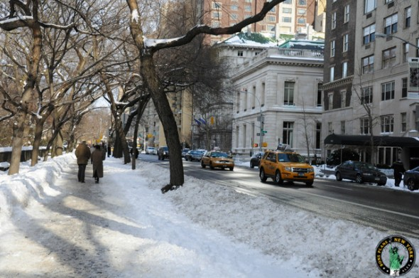 nieve en Nueva York MPVNY