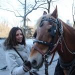Las calesas y los caballos de Central Park (un plan a evitar en Nueva York de Marion)