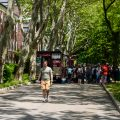 Governors Island 22