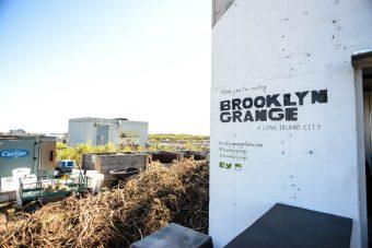 Brooklyn Grange New York 1