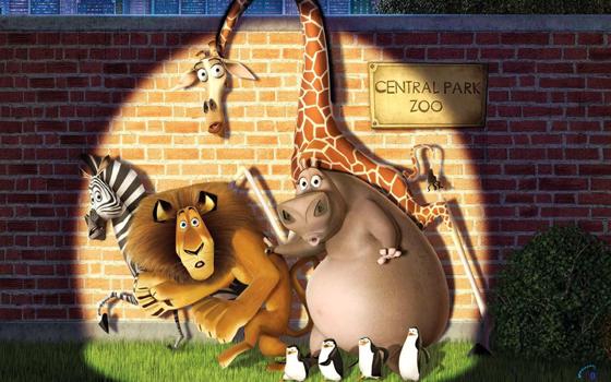 Zoo Central Park NY Madagascar