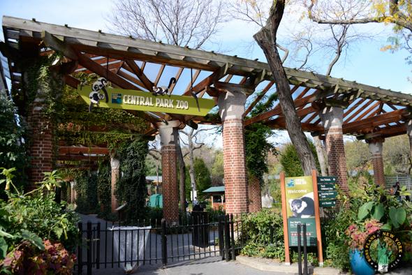 Zoo Central Park NY entrada