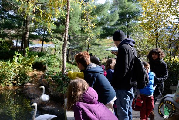 Zoo Central Park NY niños