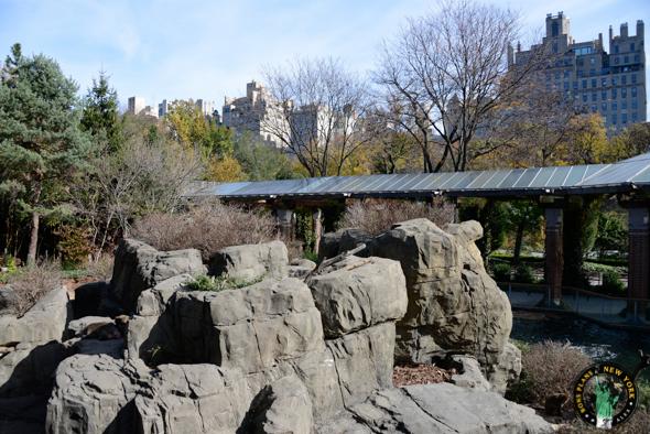Zoo Central Park NY parque
