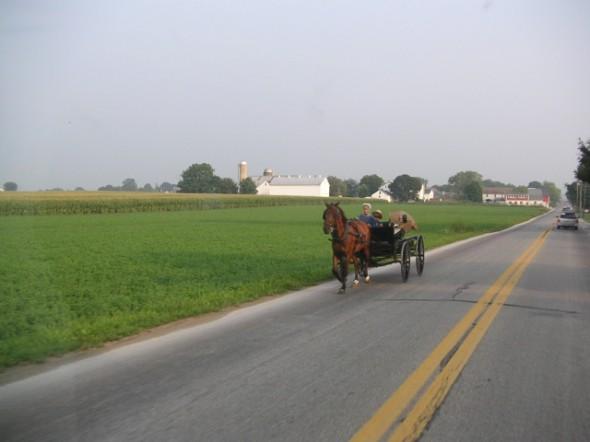 1 Lancaster Amish