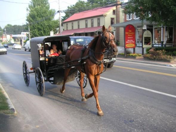 2 Lancaster Amish
