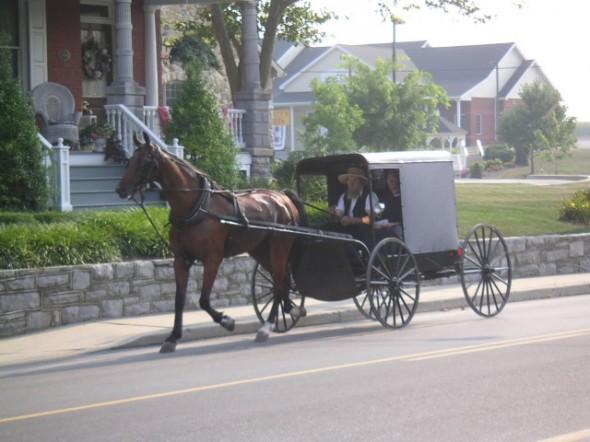 4 Lancaster Amish
