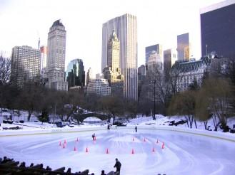 central park invierno 2013