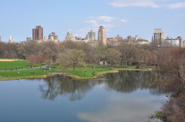 parque nueva york MPVNY