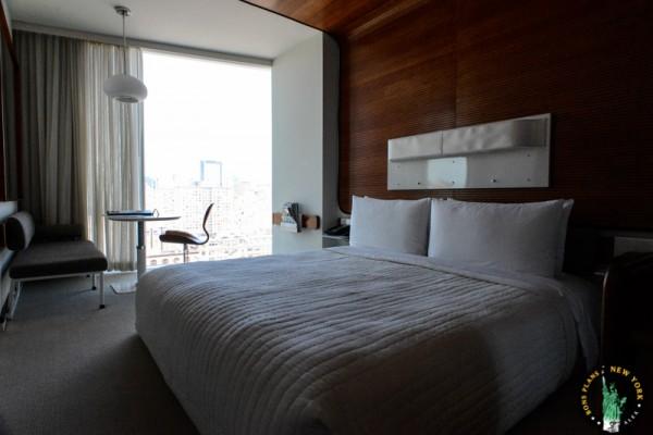 5 Standard Hotel MPVNY