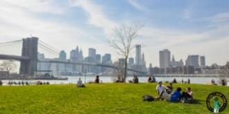 Brooklyn Bridge Park MPVNY