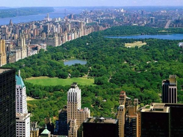 Central Park MPVNY