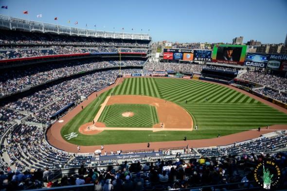 Baseball NY MPVNY