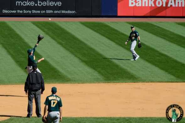baseball en nueva york MPVNY