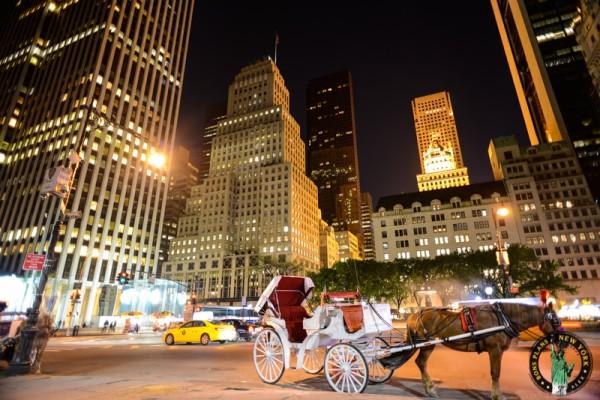 Marion calesas caballos en Nueva York 4