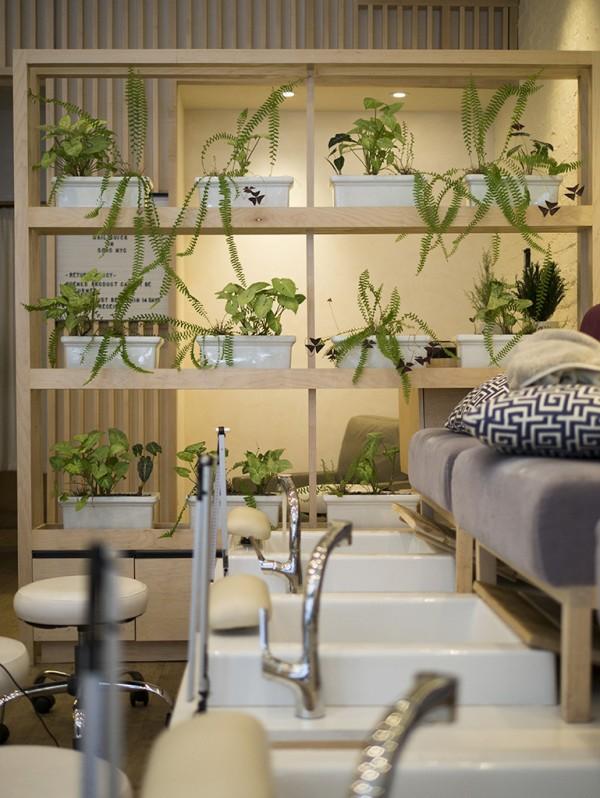 spanail soho plantas MPVNY