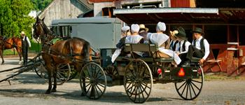 tour de filadelfia y Amish Siempre NY Tours MPVNY