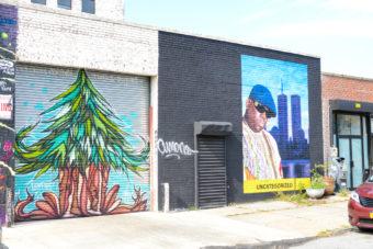 Street Art Buswick BPVNY MPVNY NYCTT 1