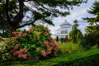 Botanical Garden New York Bronx BPVNY MPVNY NYCTT 1
