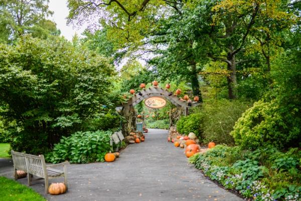 The New York Botanical Garden Bronx BPVNY MPVNY NYCTT 17