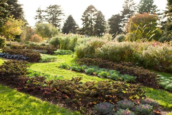 The New York Botanical Garden Bronx BPVNY MPVNY NYCTT 2