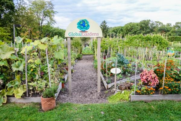 The New York Botanical Garden Bronx BPVNY MPVNY NYCTT 25