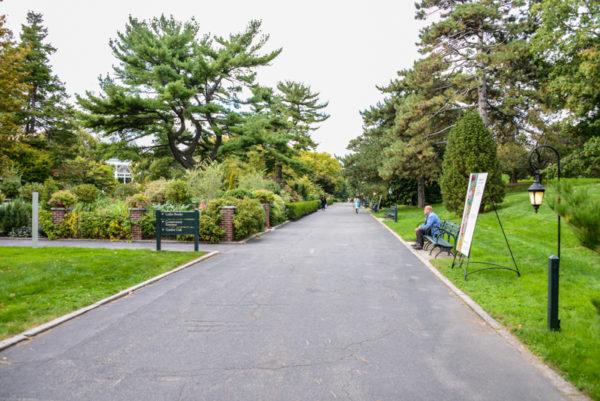 The New York Botanical Garden Bronx BPVNY MPVNY NYCTT 39