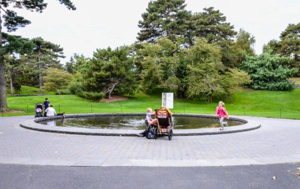 The New York Botanical Garden Bronx BPVNY MPVNY NYCTT 50