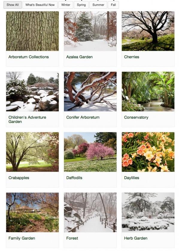 The New York Botanical Garden Bronx BPVNY NYCTT MPVNY