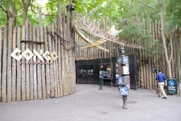 Zoo del NYC 11