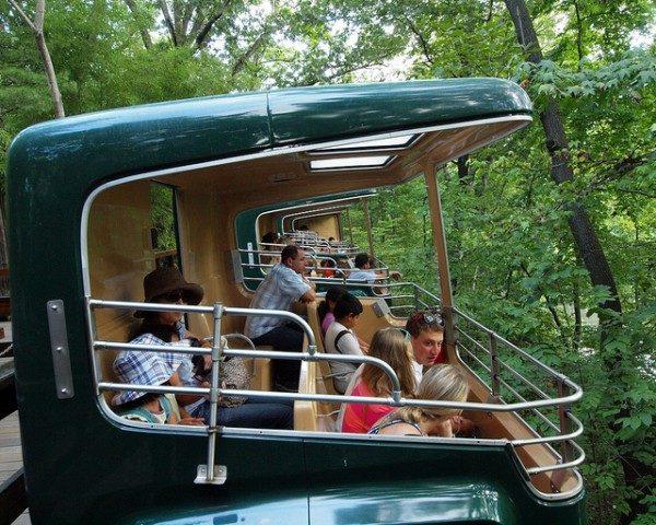 Zoo Bronx NYC 57