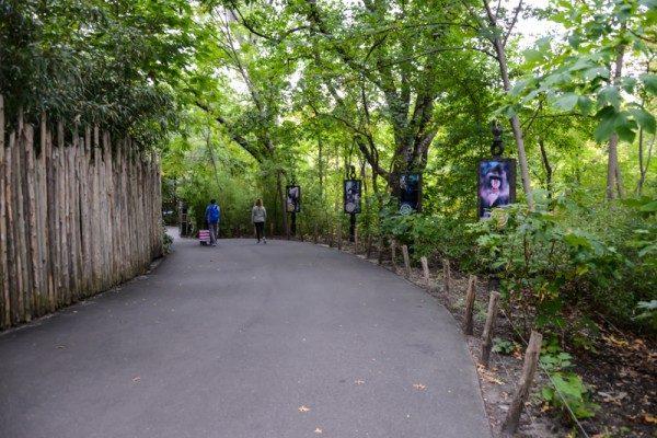 Zoo Bronx NYC 59