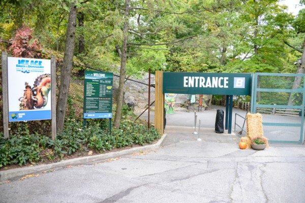 Zoo NYC 68